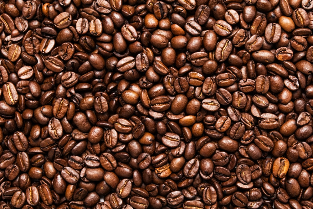 Which Coffee Is The Strongest 1