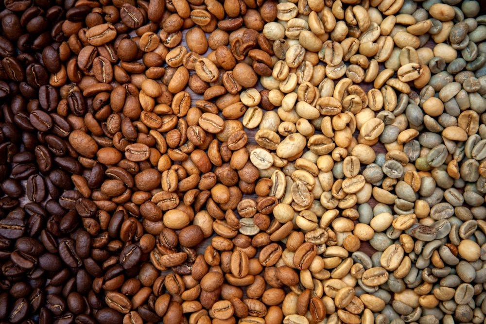 Which Coffee Roast Has The Most Caffeine 3